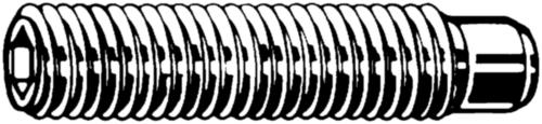 Stelschroef met binnenzeskant en tap DIN 915 Roestvaststaal (RVS) A2 M6X40