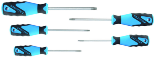 GED 3C-SCREWDR SET 5PC TORX T10-T30