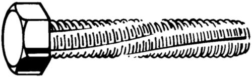 Hatlapfejű, menetmetsző csavar DIN 7513 A Acél Horganyzott