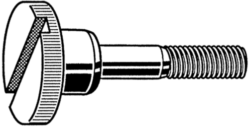 Slotted knurled thumb screw high type DIN 464 Sz Stainless steel A1