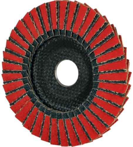 Tyrolit Flap disc ZACA 40 125 22,23