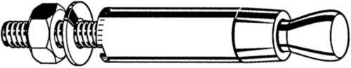 FISCHER Buitendraadanker Staal Elektrolytisch verzinkt FZA 18X80 M12/25