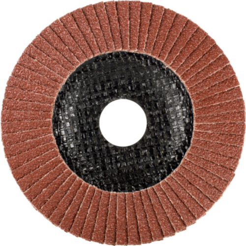 Tyrolit Flap disc 125X22,23 K60