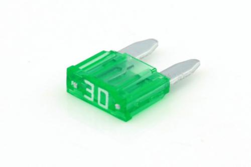 RIPC-10PC-MIF30 MINI FUSE 30A GREEN