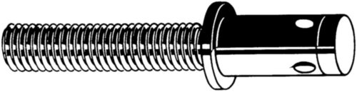 Blind rivet screws