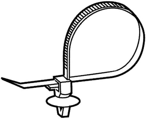Cable ties with mount