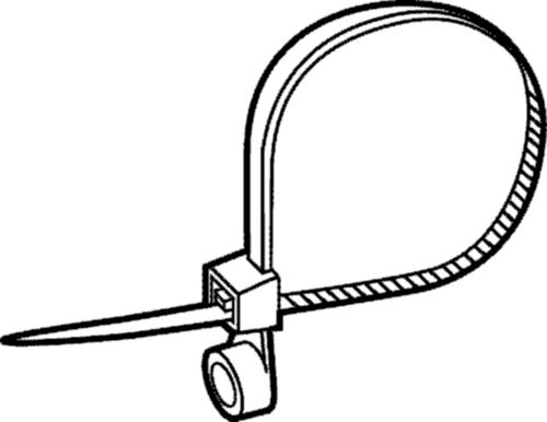Locking cable tie with eye Plastic Polyamide (nylon) 6.6 102X2,3
