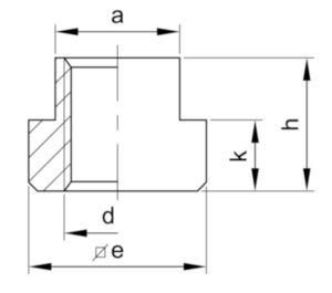 Moer voor T-gleuf DIN 508 Staal Blank 10 M12X14