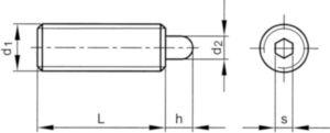 Rugós hernyócsavar, csappal, bkny. Rozsdamentes acél M10X22