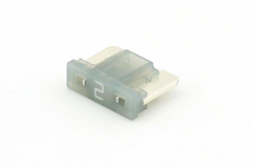 RIPC-50PC-MCF002 MICRO FUSE 2A GREY