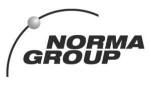 Norma Clip con dos solapas Acero Cincado 1X15