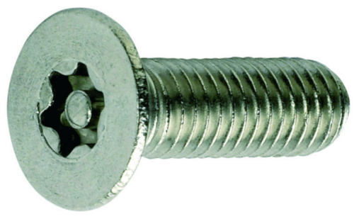 Raised countersunk machine screw with Torx and pin
