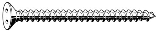 SECURITY Verzonken kop plaatschroef met 2 gaten Roestvaststaal (RVS) A2 ST6,3X25MM