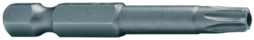 SECURITY Bit for screws with hexalobular socket with pin, 50mm Stal TX10